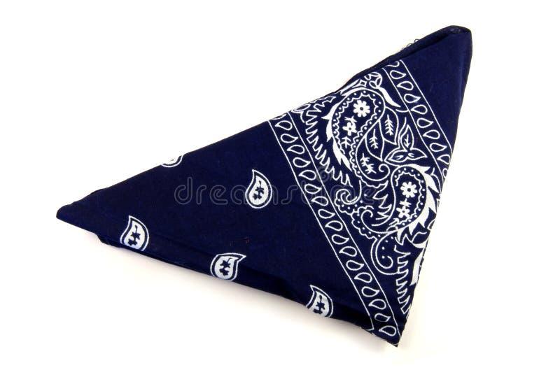 Blauer Bandana stockbilder