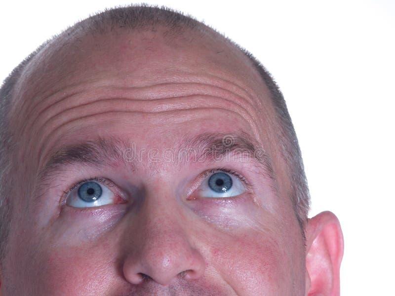 Blauer gemusterter kahler Mann, der oben ein Ohr schaut lizenzfreie stockfotografie