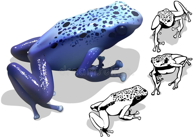 Blauer Gift-Pfeil-Frosch-Satz stock abbildung