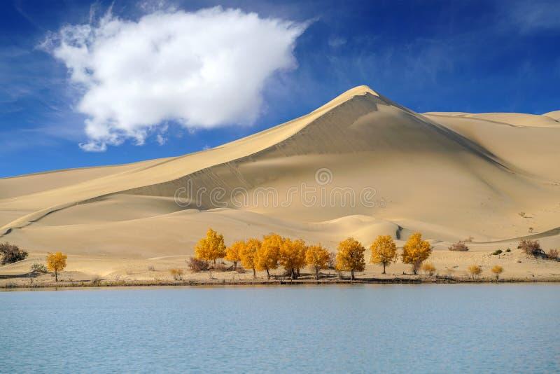 Blauer Himmel der gelben Wolke der Düne weißen im Herbst durch See stockfotos