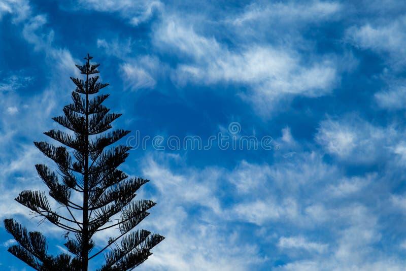 Blauer Himmel des Hintergrundgebrauches mit seidigen weißen Wolken stockfoto