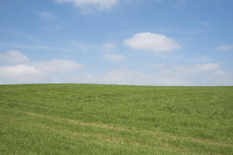 Blauer Himmel, grünes Gras, weiße Wolken lizenzfreies stockfoto