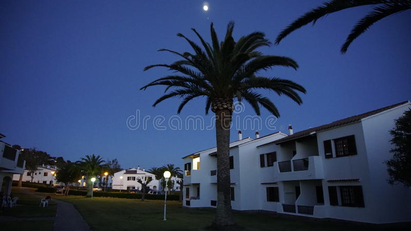 Blauer Himmel mit Mond-Licht und Palmen im Nachtleben in Minorca stockfotografie