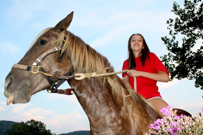 Blauer Himmel-Pferden-Mädchen stockfoto