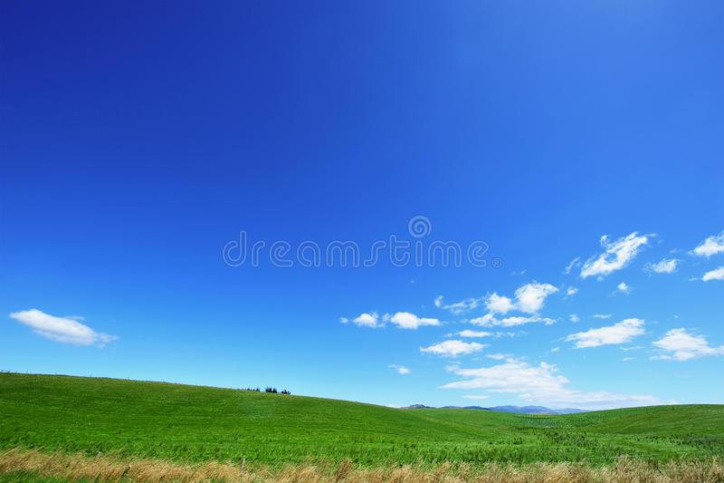 Blauer Himmel und grünes Feld lizenzfreie stockfotos