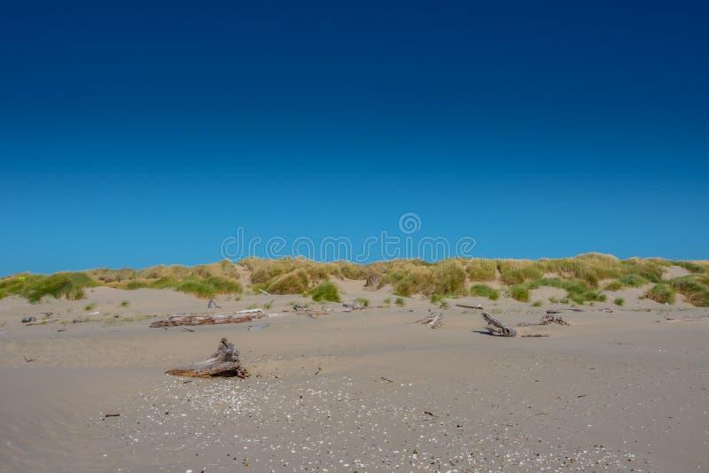 Blauer Himmel und grasartige Sanddünen stockfotografie