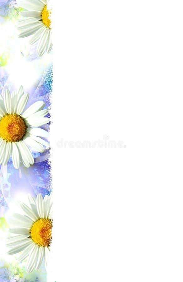 Blauer Hintergrund mit weißen Blumen stockfoto