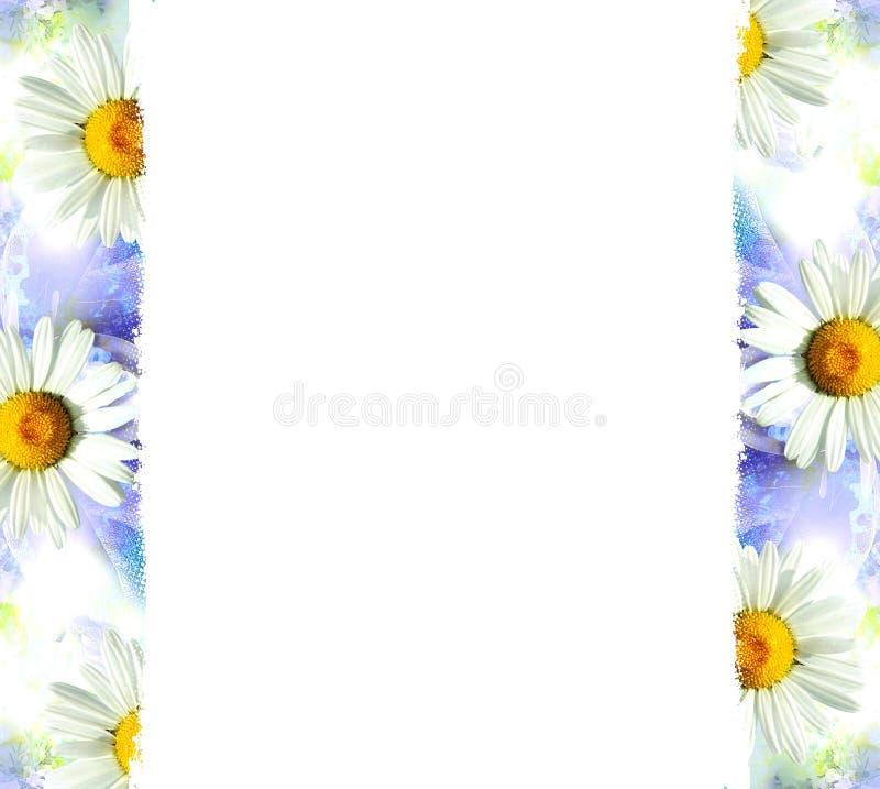 Blauer Hintergrund mit weißen Blumen stockbild
