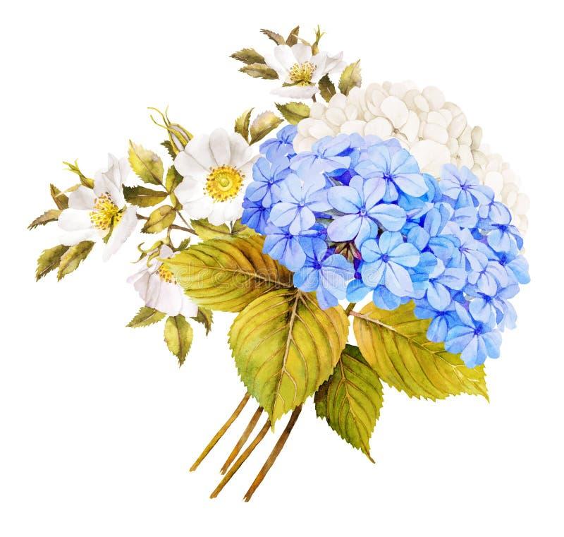Blauer Hochzeitsblumenstrauß der weißen Blume Aquarellhortensie, Rosen a stock abbildung