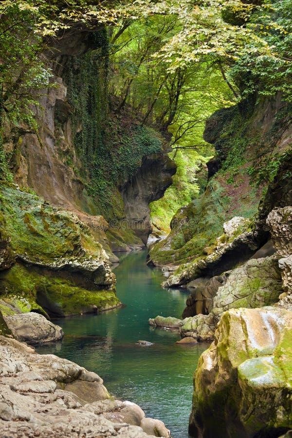 Blauer Nebenfluss in Martvili-Schlucht, Georgia stockbilder