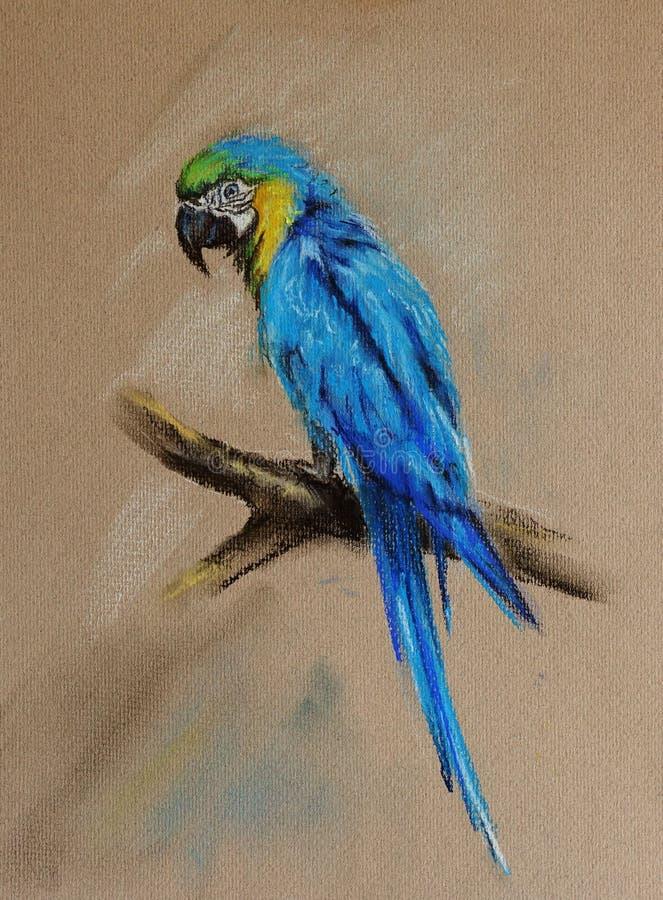Blauer Papagei vektor abbildung
