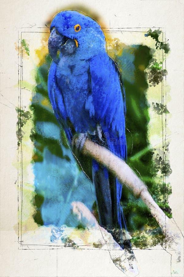 Blauer Papagei digitale Illustration basiert auf ursprünglichem Foto stockbilder