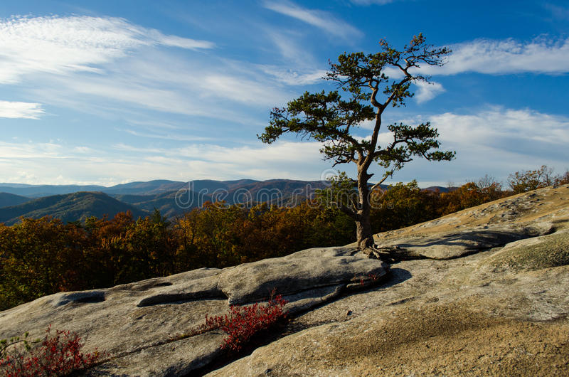 Blauer Ridge-Berge stockfotos