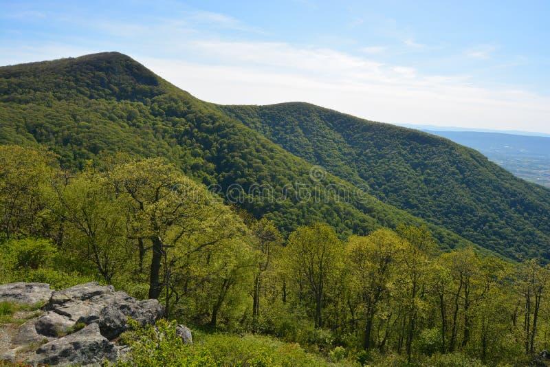 Blauer Ridge Mountains im Sommer lizenzfreies stockfoto