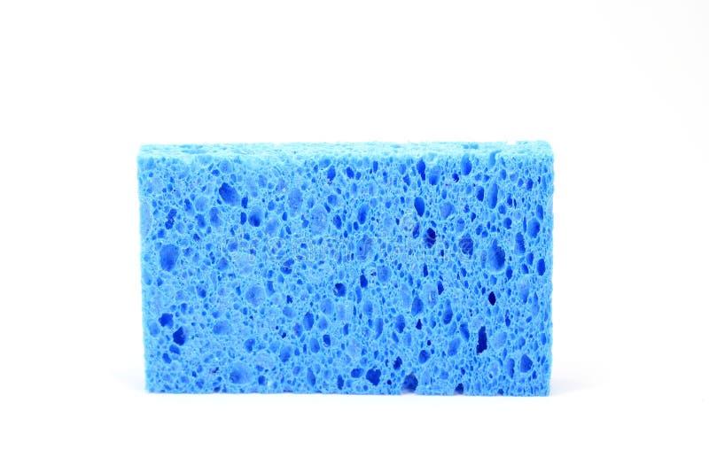 Blauer Schwamm stockbild