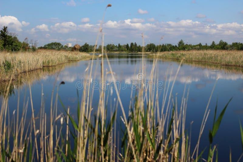 Blauer See mit den weißen Wolken reflektiert stockbild
