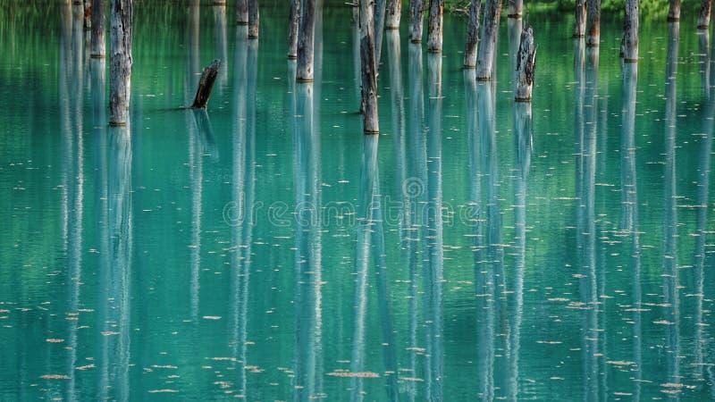 Blauer Teich an  Biei HokkaidŠ†‹Japan lizenzfreies stockfoto