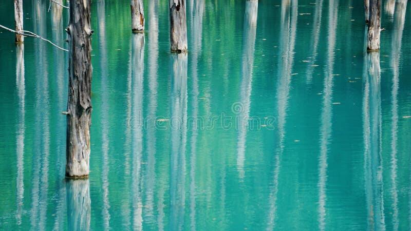 Blauer Teich an  Biei HokkaidŠ†‹Japan lizenzfreie stockbilder