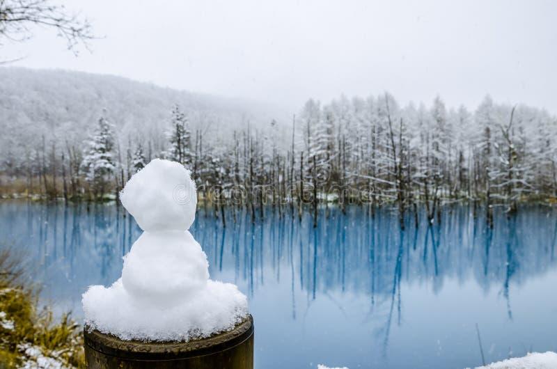 Blauer Teich Biei, Hokkaido, Japan lizenzfreies stockfoto