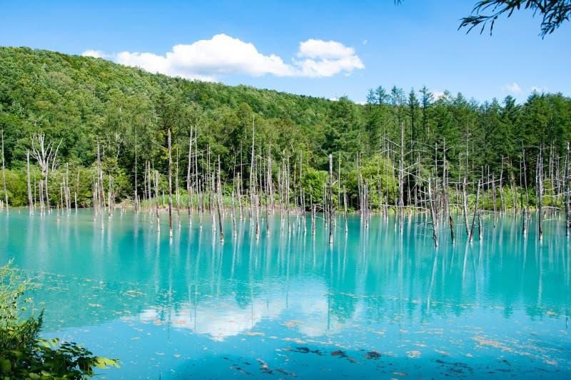 Blauer Teich mit klarem blauen Himmel in Japan hokkaido lizenzfreie stockbilder