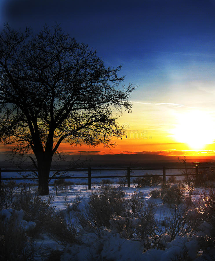 Blauer und orange Himmel stockfotografie