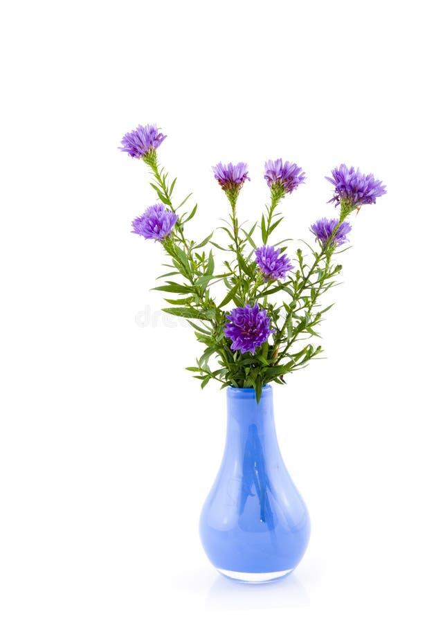 Blauer Vase mit purpurroten Astern lizenzfreie stockbilder