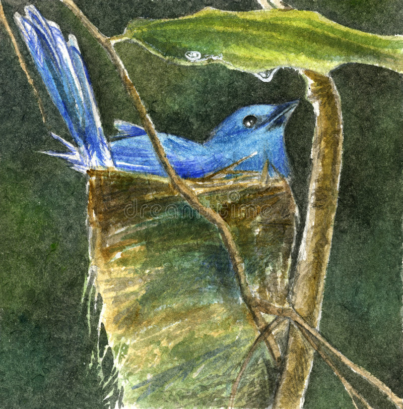 Blauer Vogel - stock abbildung