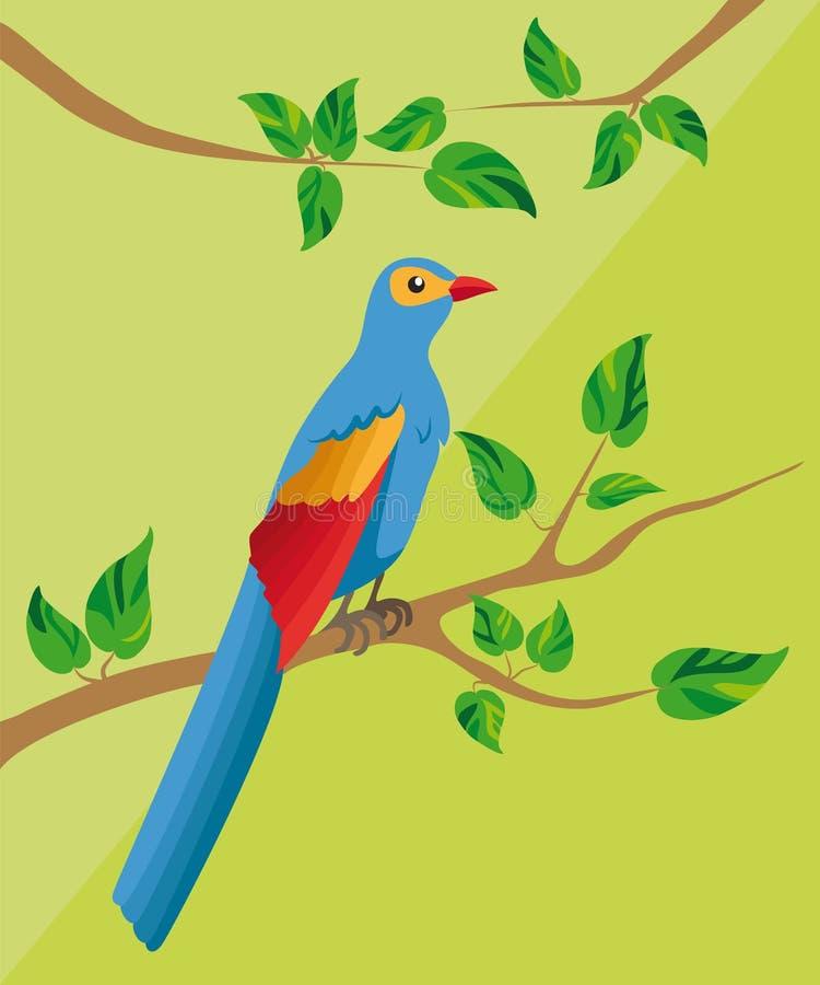 Blauer Vogel mit einem langen Schwanz, sitzend auf einer Niederlassung mit grünem Urlaub lizenzfreie stockfotos