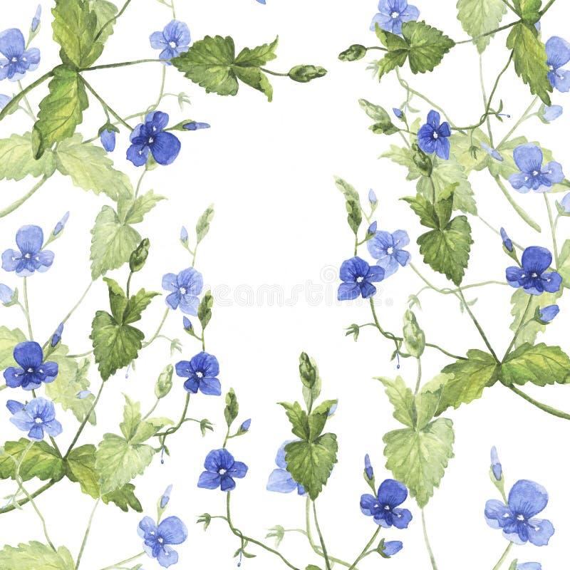 Blauer Waldblumenhintergrund Hand gezeichnete Aquarellillustration lizenzfreie stockfotos