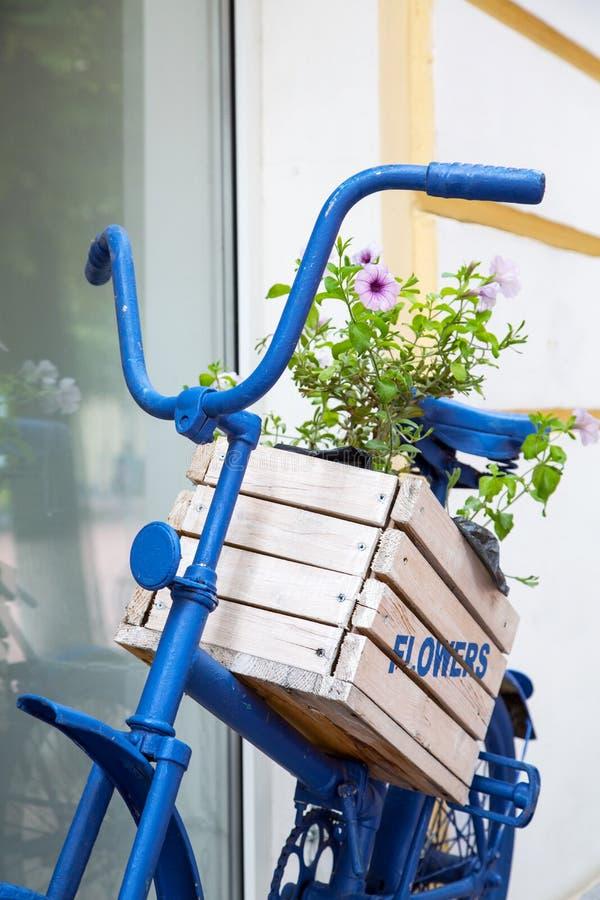 Blaues altes Fahrrad mit Blumenkasten lizenzfreie stockbilder