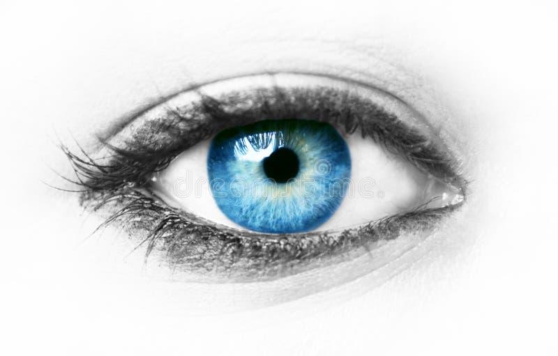 Blaues Auge stockfoto