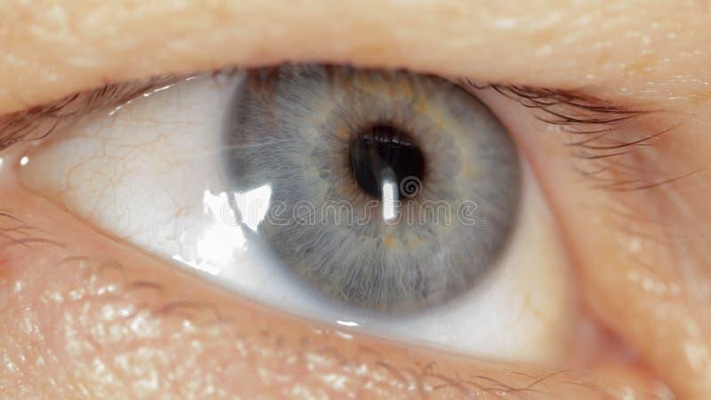 Blaues Auge auf dem Gesicht des Mannes Makro stockfoto