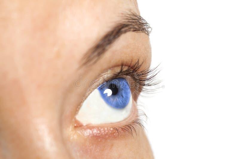 Blaues Auge der Frau lokalisiert auf weißem Hintergrund stockfotografie
