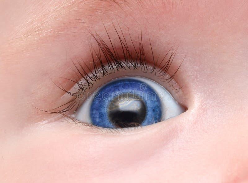 Blaues Auge des Schätzchens lizenzfreie stockbilder