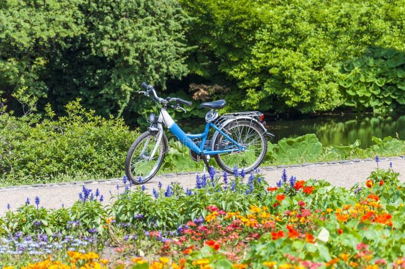 Blaues Fahrrad auf Park ` s Weg, der umgeben wird, indem es blüht, blüht lizenzfreie stockfotos