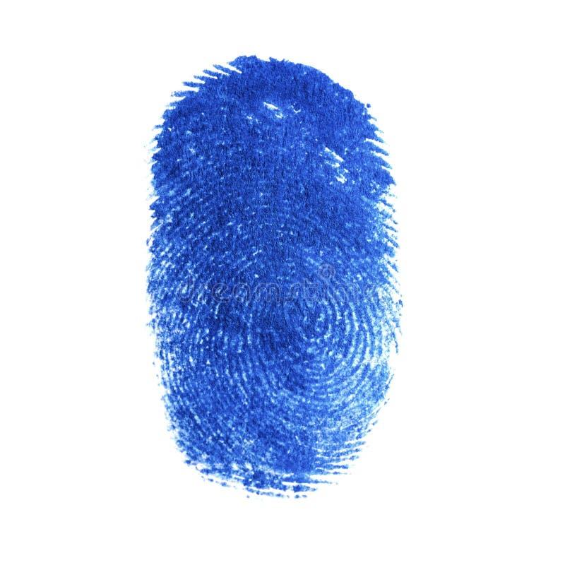 Blaues Fingerabdruckidentitätszeichen der Tinte lokalisiert auf Weiß lizenzfreies stockfoto