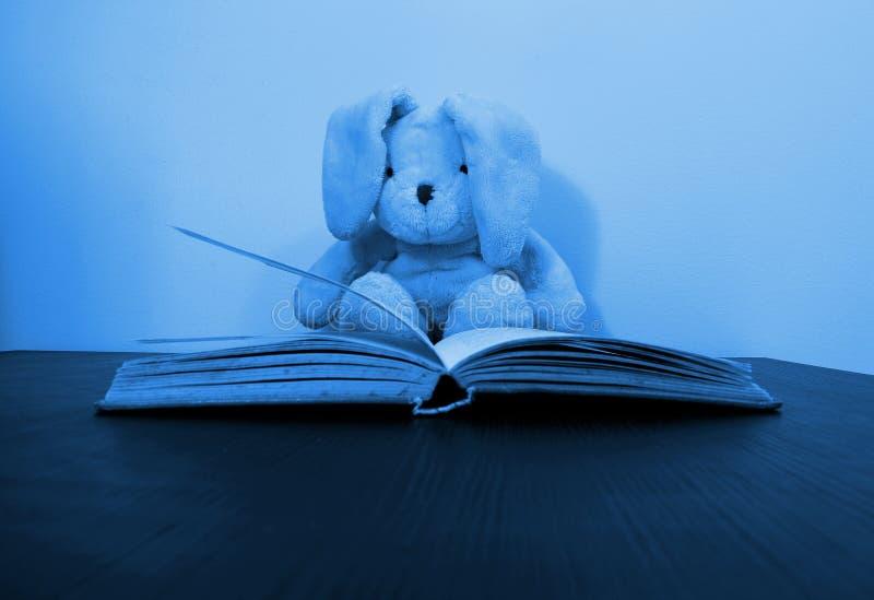 Blaues getontes Foto eines Kaninchenplüschspielzeugs, das hinter einem offenen Buch sitzt stockbild