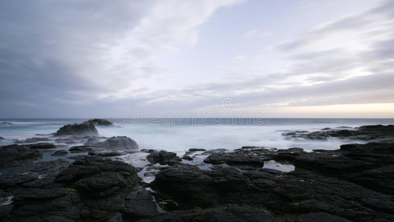 Blaues Grau und wild lizenzfreie stockfotografie