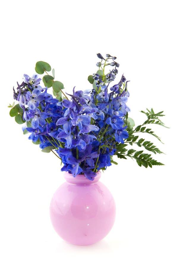 Blaues larkspur im rosafarbenen Vase stockfotografie