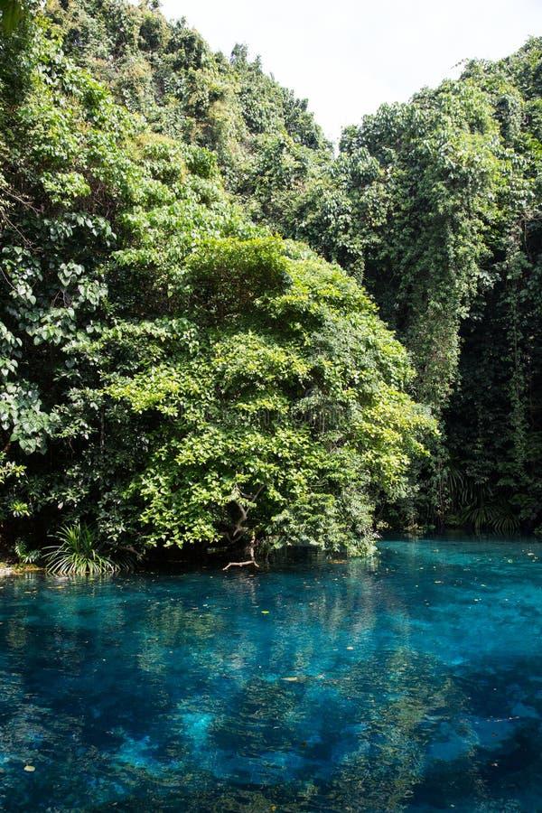 Blaues Loch, Vanuatu lizenzfreie stockbilder