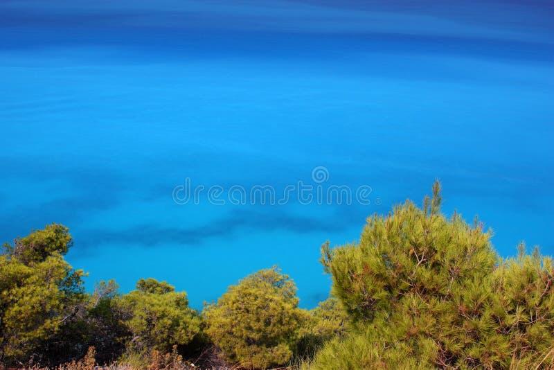 Blaues Meer und grüne Kiefern stockbilder