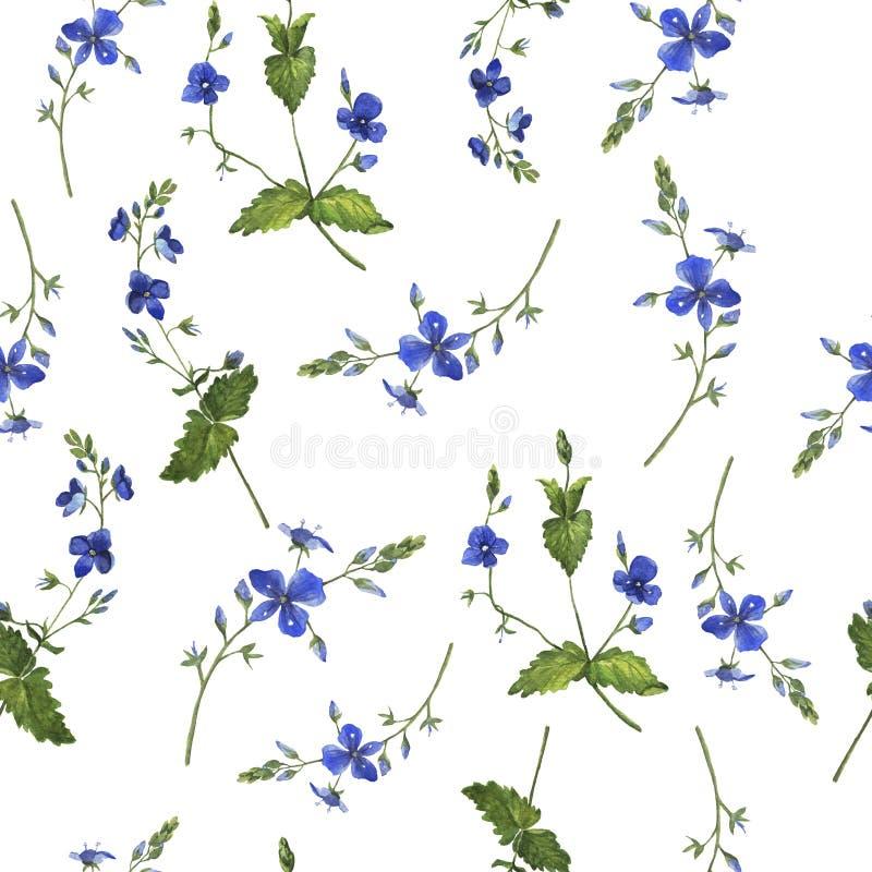 Blaues nahtloses Muster der Sommerblume oder -vergissmeinnichts Dekoratives Bild einer Flugwesenschwalbe ein Blatt Papier in sein lizenzfreies stockbild