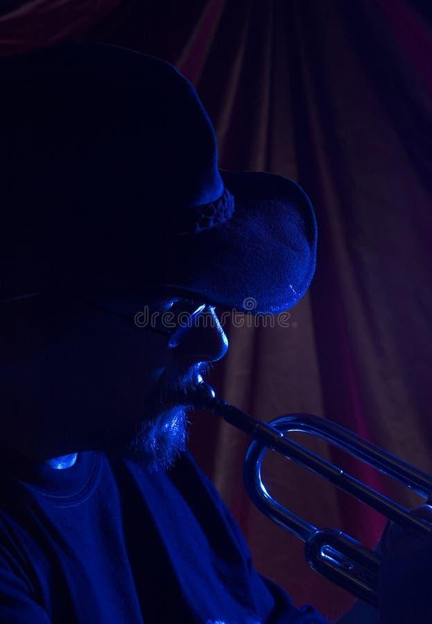 Blaumusiker   lizenzfreie stockbilder