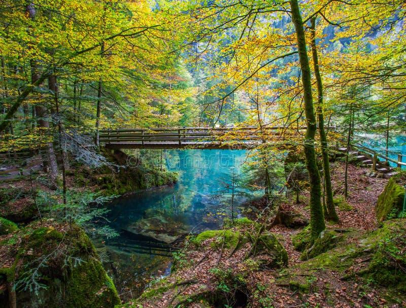 Blausee, Zwitserland - Houten Brug II royalty-vrije stock foto's