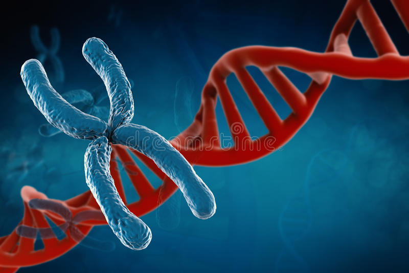 Blauw chromosoom royalty-vrije stock afbeeldingen