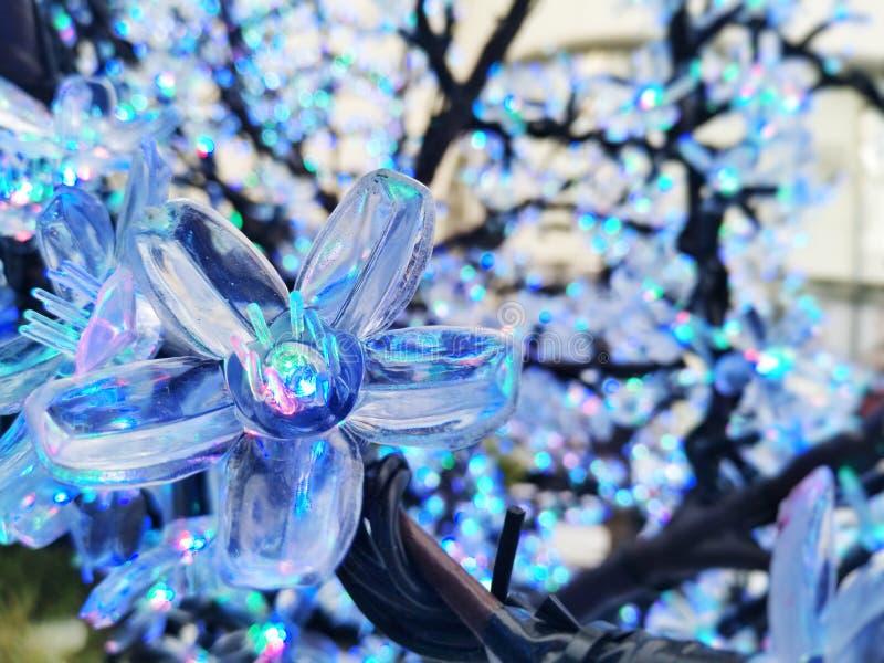 Blauw Crystal Flower royalty-vrije stock afbeeldingen