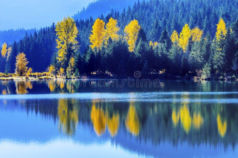 Blauw de Bomen Gouden Meer Autumn Snoqualme Pass Washing van Wateryewllow stock afbeelding