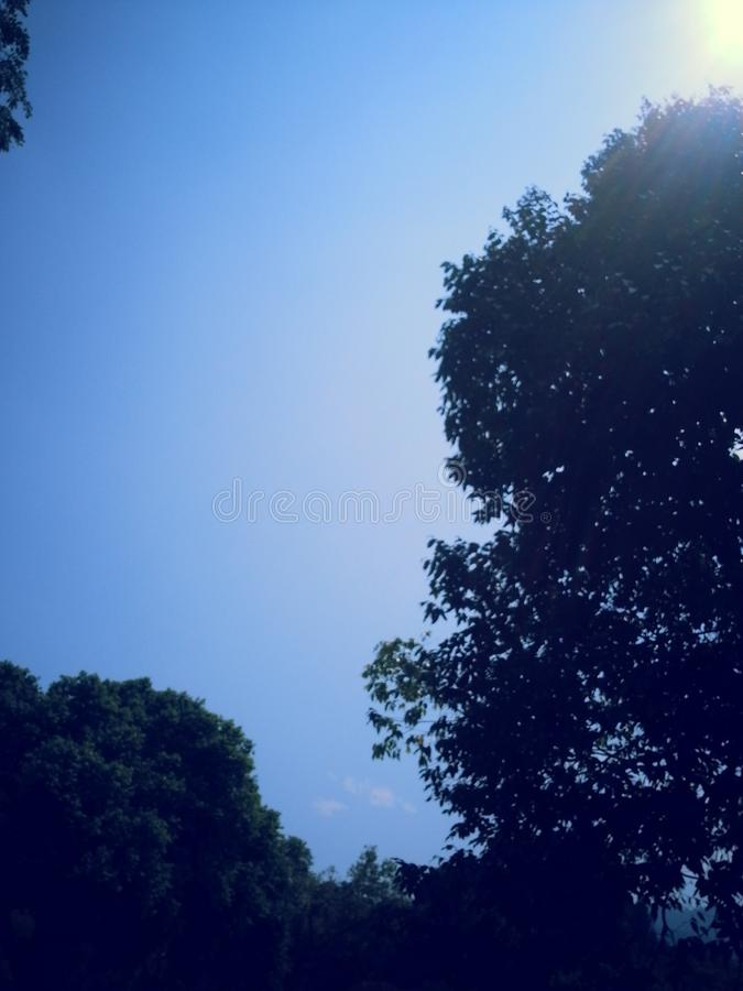 Blauw de hemelpark van het parkthema royalty-vrije stock fotografie