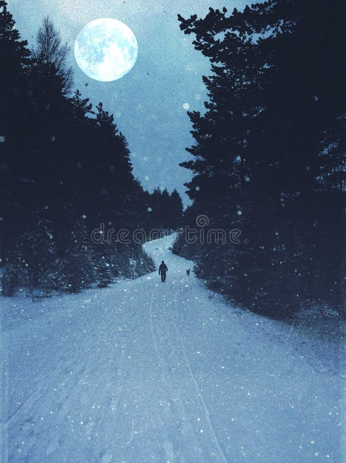 Blauw de winterogenblik stock fotografie