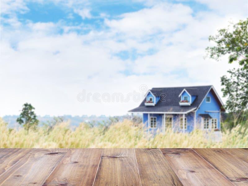 Blauw de zomerbuitenhuis op het wilde grasgebied stock afbeelding